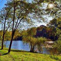 Конец октября в парке :: Nina Streapan