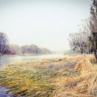 Осеннее утро на реке Цне....... :: Александр Селезнев