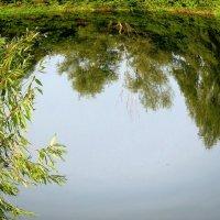 Озерный край. :: Чария Зоя