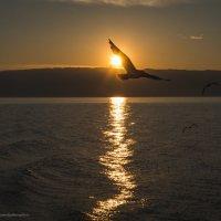 Закат на озере Байкал. :: Ирина Малышева