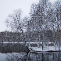 Зима первый снег :: Анна Воробьева
