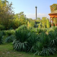 Центральный ботанический сад :: Андрей