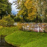 Осенние картинки.. :: ирина )))