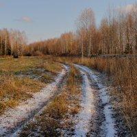 По первому снегу :: Татьяна Шаклеина
