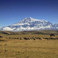 Вид на Эльбрус с плато Бийчесын :: Леонид Сергиенко