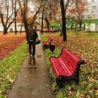 Осень... :: Константин Поляков