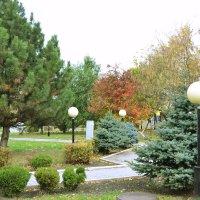 Осенний сквеp :: Анастасия Фомина