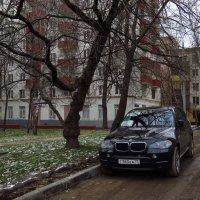 Ноябрь уж наступил :: Андрей Лукьянов