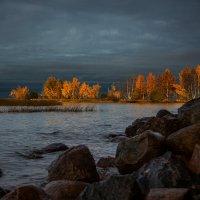 Финский залив в октябре... :: Светлана Салахетдинова