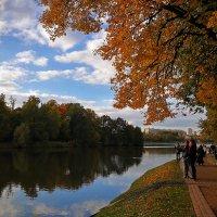 В старом парке бродит осень :: Alex
