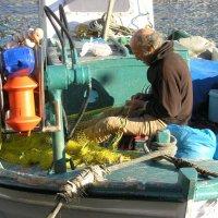 Рыбак :: Tanja Gerster