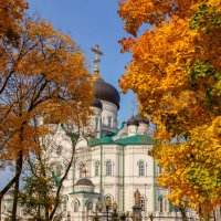 Краски осени :: Oleg Akulinushkin