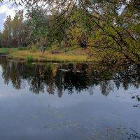 Осеннее озеро :: Сергей Карачин