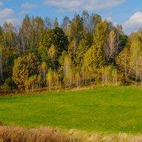 Золотая осень :: Виктор