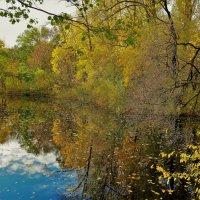 Осенняя рапсодия... :: Sergey Gordoff