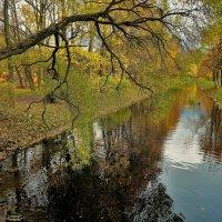 Шепнула осень-я вернусь... :: Sergey Gordoff