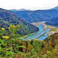 Долина реки Уса :: Сергей Чиняев