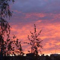 Рассвет  над  Москвой ! Сейчас! :: Виталий Селиванов