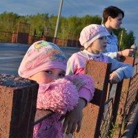 Три моих высших образования))) :: Лариса Красноперова
