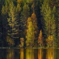 Зеркальная осень :: Фёдор. Лашков