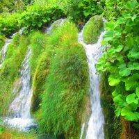 Водопад на Плитвицких озерах (Хорватия) :: elena