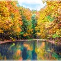 Осенние краски 4 :: Сергей Филатов