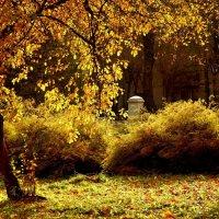 Последнее золото октября :: Кулага Андрей Андреевич