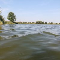 Вода,кругом вода) :: Ольга Давыдова