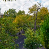 Взгляд из окна, - утро ноябрьского дня. :: Вахтанг Хантадзе