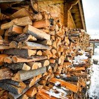 Подготовка к зиме :: Роман Дудкин