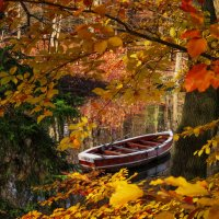 Лодка в осеннем парке... :: Сергей
