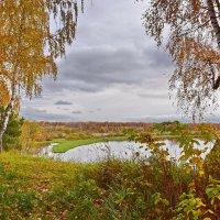 Цвет  осени. :: Валера39 Василевский.