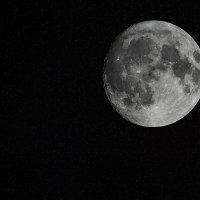 Луна 2.11.17. :: Аркадий Алямовский