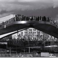 Парящий мост в Зарядье. :: Николай Кондаков