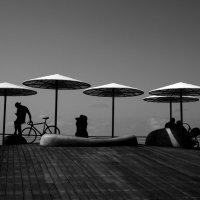 У берега Средиземного моря :: Alla S.