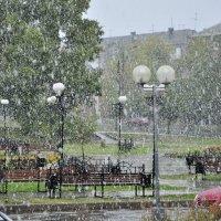 Первый снег :: Александр Кочуркин