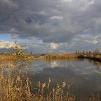 Осенние отражение :: оксана косатенко