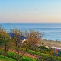 Солнечный день в ноябре. :: Вахтанг Хантадзе