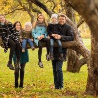 Детки на ветке :: Юлия Свежова