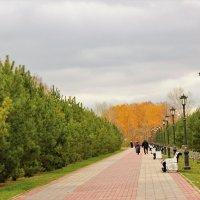 дорожка в парке :: венера чуйкова