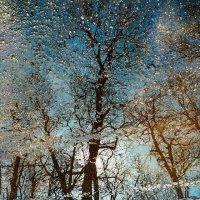 Пейзажи на асфальте :: ирина лузгина