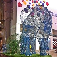 Вот так слон! :: Виталий Селиванов