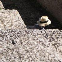 Соломенная шляпка 2 :: Tanja Gerster