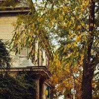 Осень в Измаиле :: Алёна Найдёнова