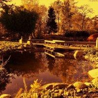 Золотая осень :: Nina Yudicheva