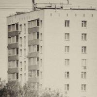 На прогулку :: Игорь Герман