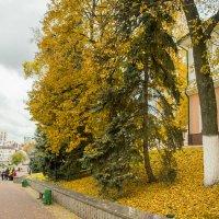 Экскурсия по осеннему Саранску 2 :: Евгений Ломтев
