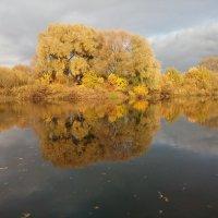 Зеркало :: Евгения Куприянова