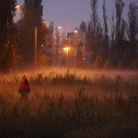 """""""Ёжик"""" в тумане :: Анатолий Шулков"""