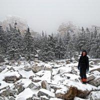 Ноябрь в горах Южного Урала :: Галина Ильясова